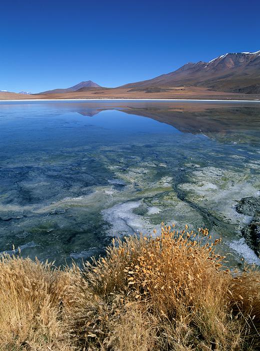 Altiplano wonders