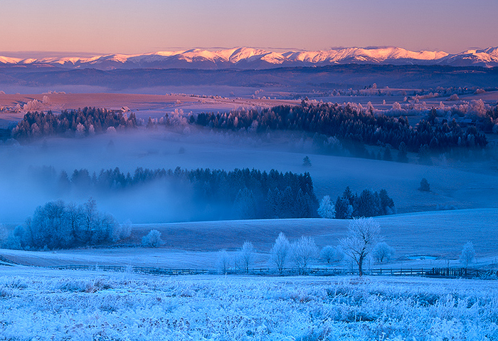 Cold & Blue
