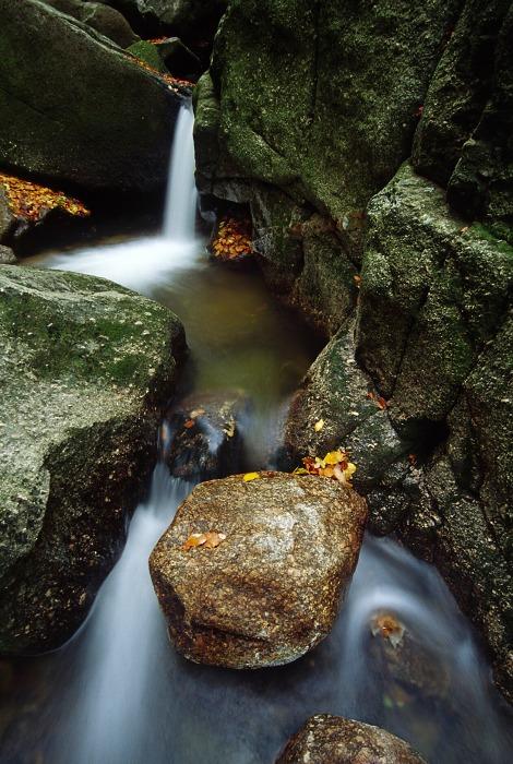 Hajeny Creek II