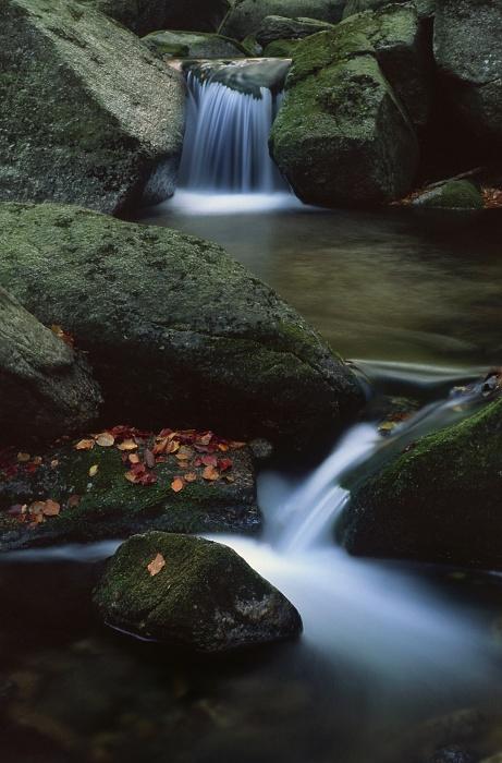 Hajeny Creek