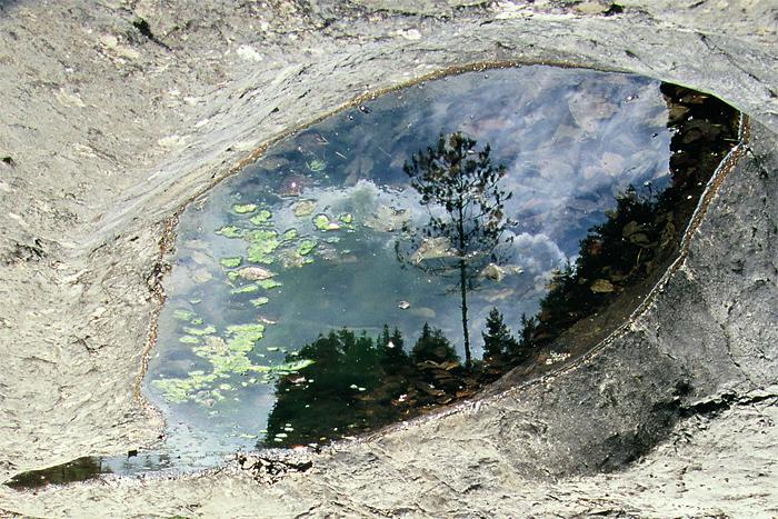 Pohľad do duše krajinkára