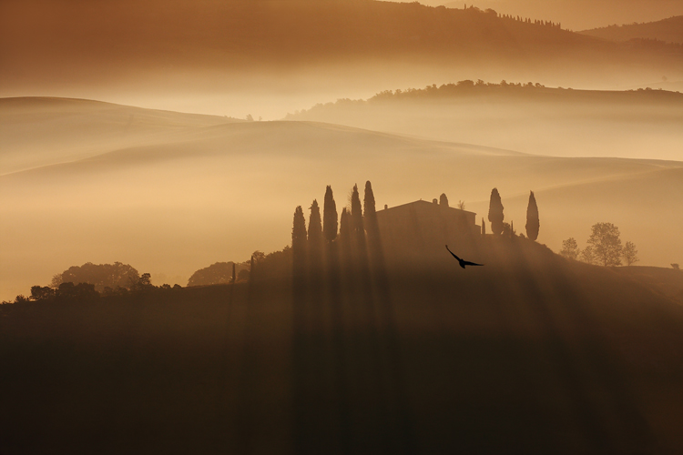 Tuscany Dream