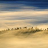 Ostrov v moři mlh