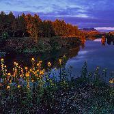Random landscape photo - Mývatn