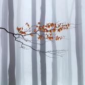 Random landscape photo - Waiting for Winter