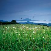 Random landscape photo - Louka