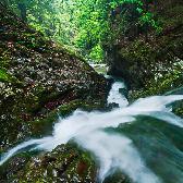 Random landscape photo - Wild Stream