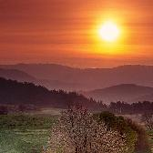 Random landscape photo - Agent Orange