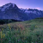 Random landscape photo - Alps in Blue