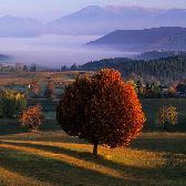 Random landscape photo - Autumn spirit