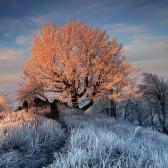 Random landscape photo - Carpathian mornings
