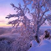 Random landscape photo - Colors of winter