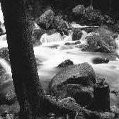 Random landscape photo - Creek guard