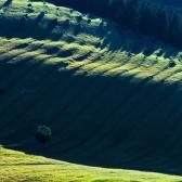 Random landscape photo - Green Spirit