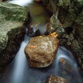 Random landscape photo - Hajeny Creek II