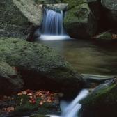 Random landscape photo - Hajeny Creek