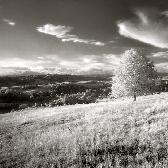 Random landscape photo - Last One