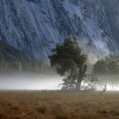 Random landscape photo - Morning in Yosemites