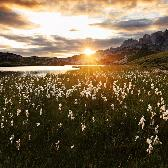 Random landscape photo - Morning Sun in Dolomites
