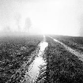 Random landscape photo - On the Way