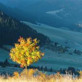 Random landscape photo - Pod Pra�ivou II