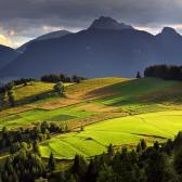 Random landscape photo - Summer fields