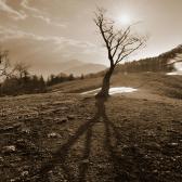 Random landscape photo - Suncatcher