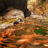 Random landscape photo - Whirl