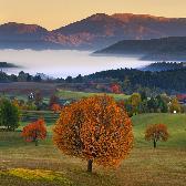 Random landscape photo - Cherry fall