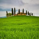 Random landscape photo - Toskánsko, Itálie