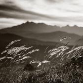 Random landscape photo - Zamagurie