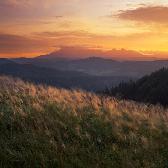Random landscape photo - Golden Times