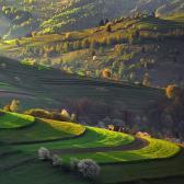 Random landscape photo - Spring fields