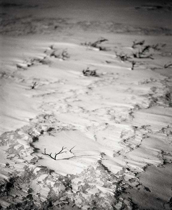 Zamrzlá krajina